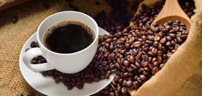 Resultado de imagen para Empresa Procesadora de Café Luis Bocourt