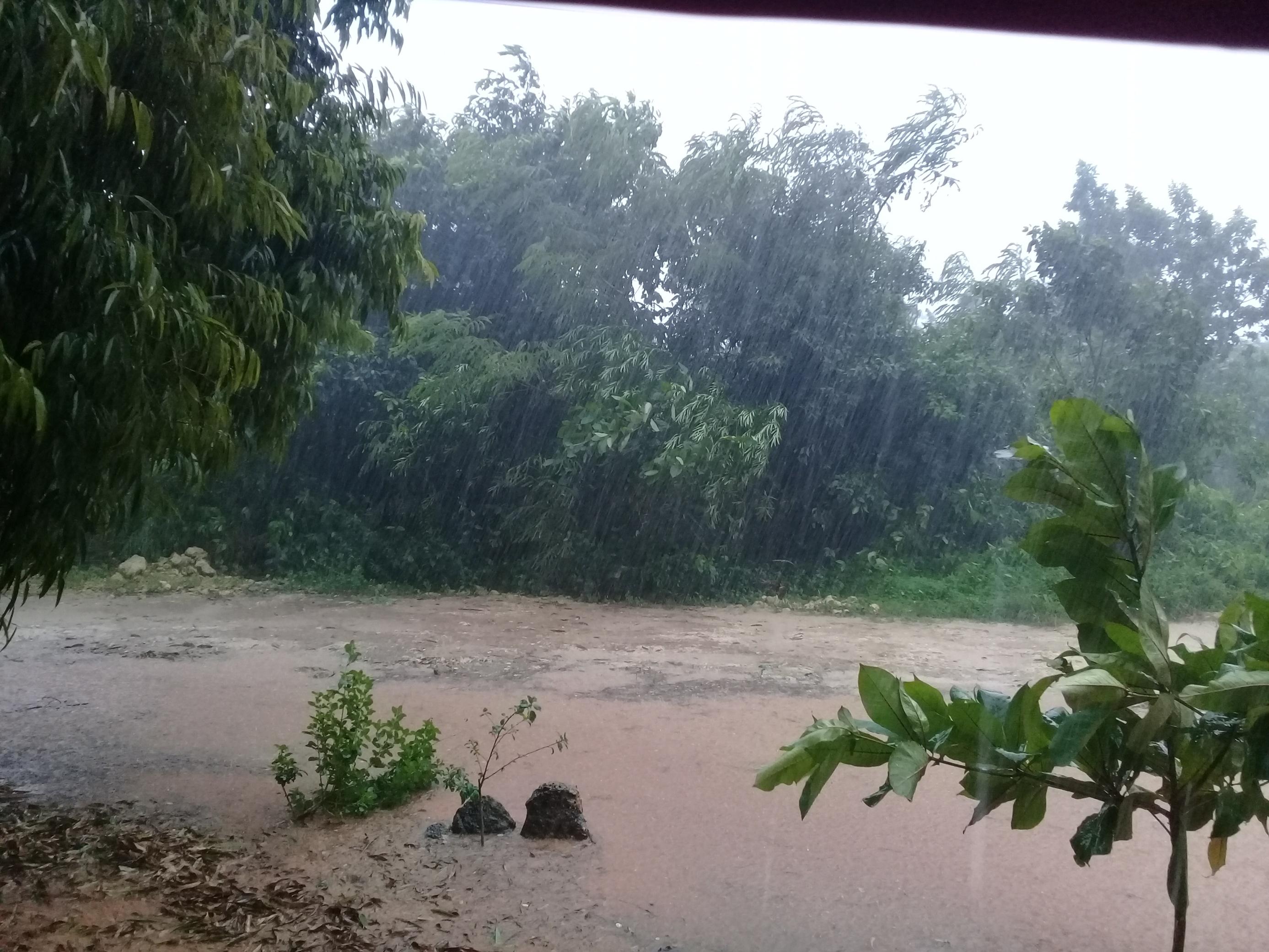 Tormenta local severa en Jagüey Grande