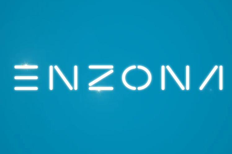 Plateforme Enzona avec 30 millions d'opérations dans son deuxième anniversaire