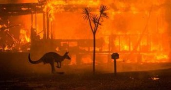 Diaz-Canel sends a message of solidarity with Australia in the face of fire damage.
